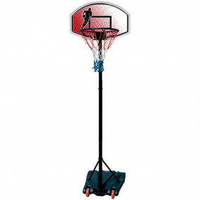 Basket con asta 240cm