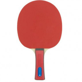Racchetta Ping Pong competition