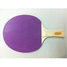 Racchetta Ping Pong principiante
